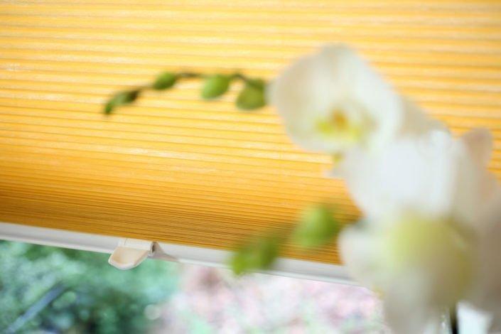 Blöcker Cosiflor Wabenplissee gelb Küche